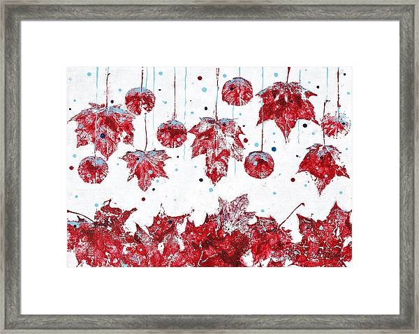 Christmas Decorations Of Nature Framed Print
