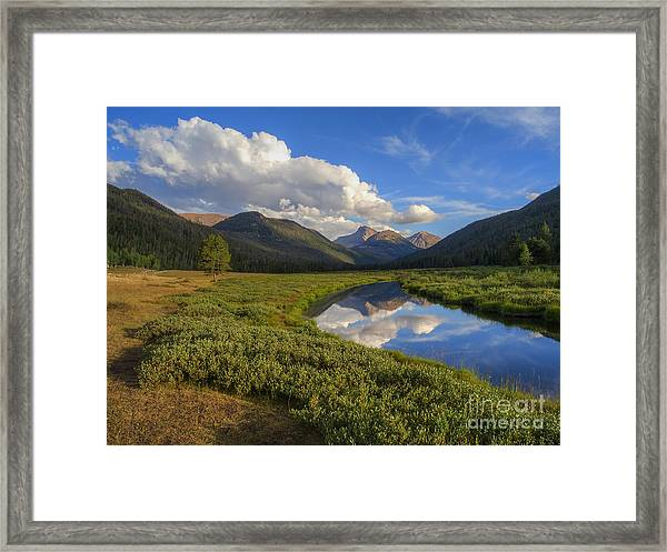 Christmas Meadows Framed Print