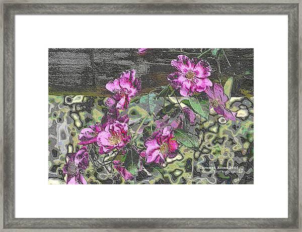 Chrome Roses 2666 Framed Print