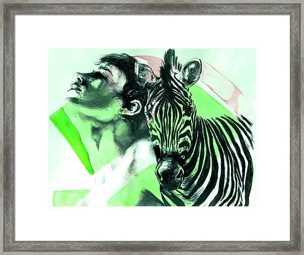 Chronickles Of Zebra Boy   Framed Print