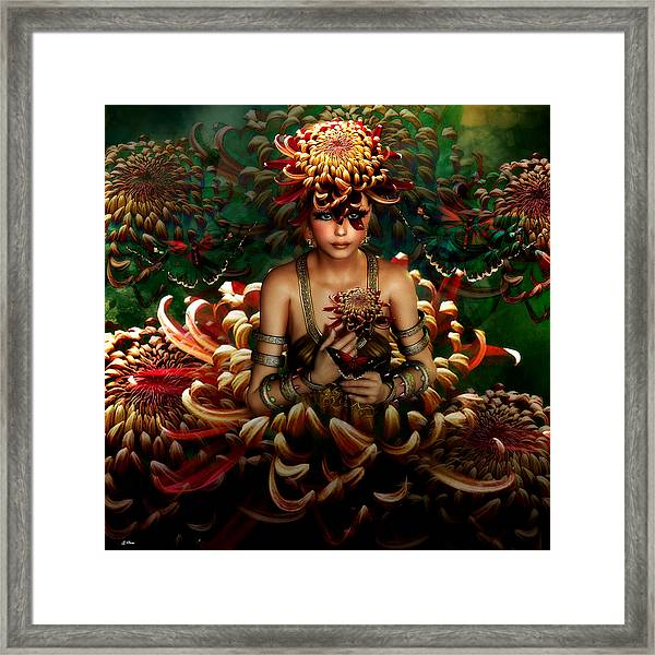 Chrysanthemum Bouquet 004 Framed Print