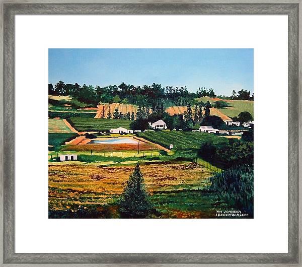 Chubby's Farm Framed Print