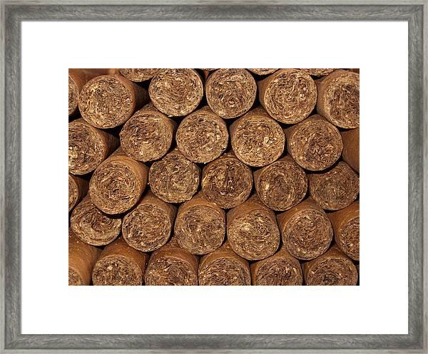 Cigars 262 Framed Print