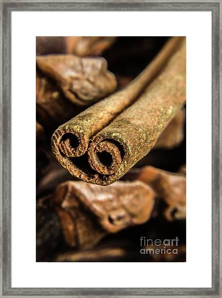 Cinnamon Heart Framed Print