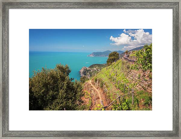 Cinque Terre Italy Vineyard Walk Framed Print