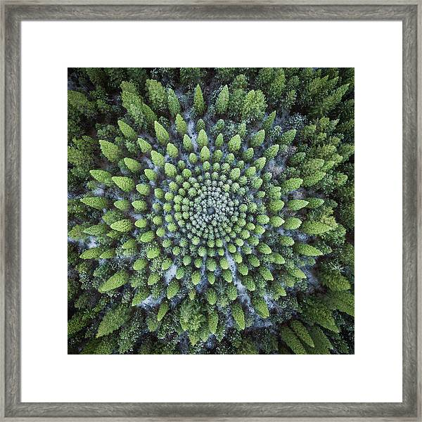 Circular Symmetry Framed Print