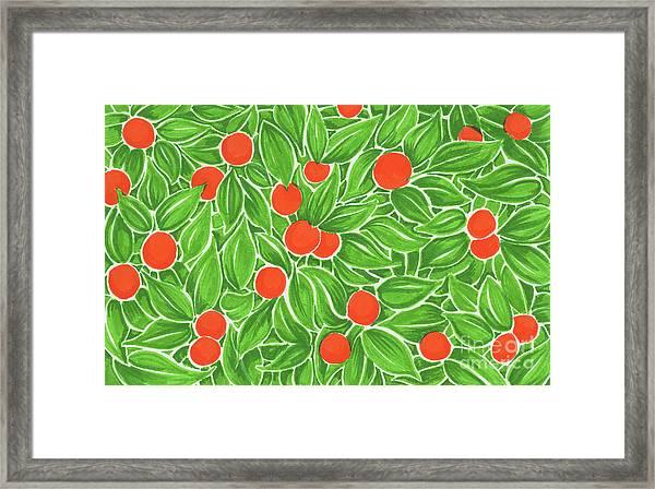 Citrus Pattern Framed Print