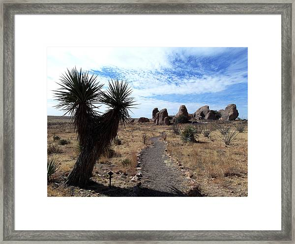 City Of Rocks - New Mexico Framed Print