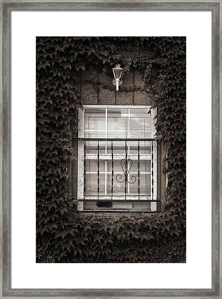 City Window Detail Framed Print