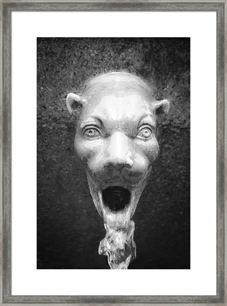 Civit Head Detail Framed Print