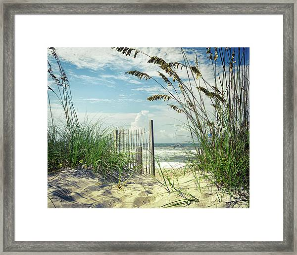 To The Beach Sea Oats Framed Print