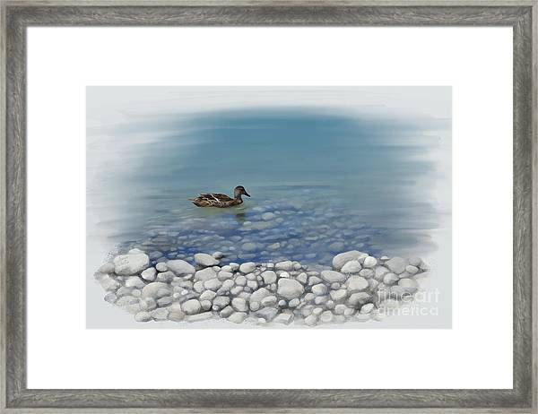 Clear Water  Framed Print