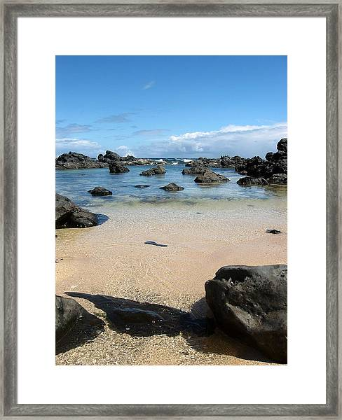 Clear Water Shore Framed Print by Halle Treanor