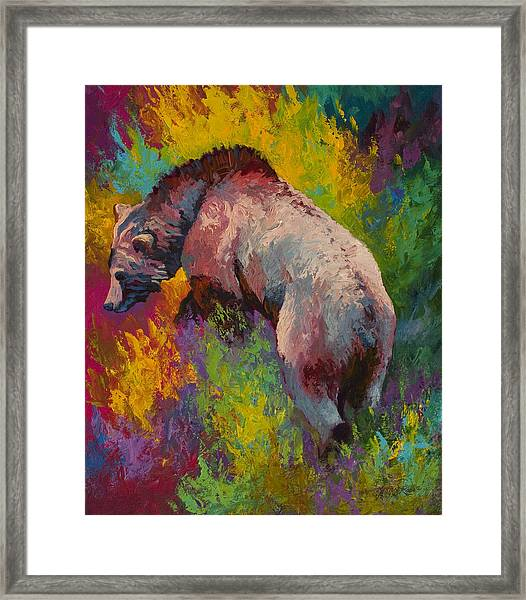 Climbing The Bank - Grizzly Bear Framed Print