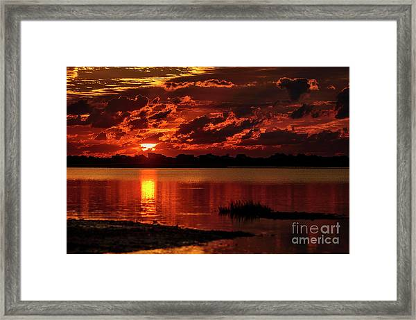 Framed Print featuring the photograph Cloaked In Red by DJA Images