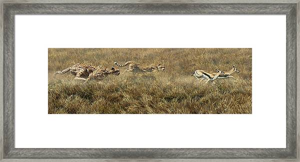 Closing In Fast Framed Print