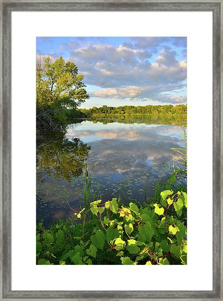 Clouds Mirrored In Snug Harbor Framed Print