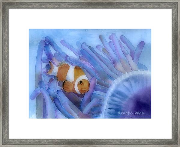 Clownfish And The Sea Anemone Framed Print