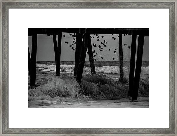 Coastal Movements Framed Print