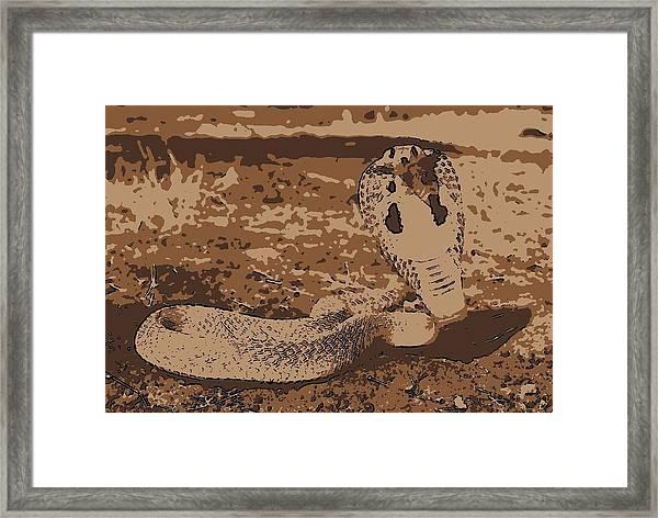 Cobra Love Framed Print