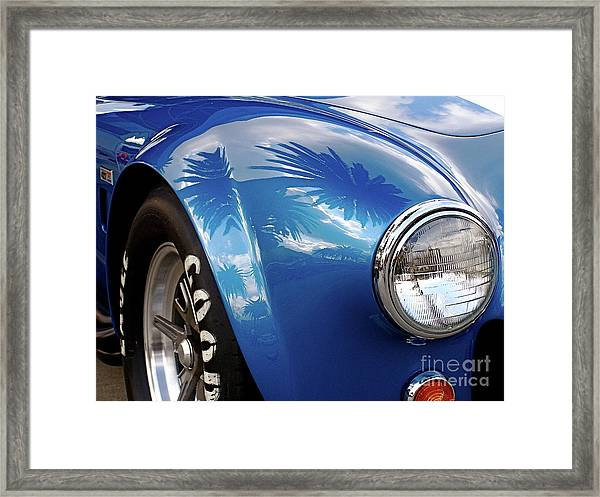 Cobra Under The Palms Framed Print