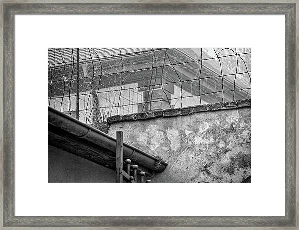 Cobwebs On Barbed Wire Framed Print