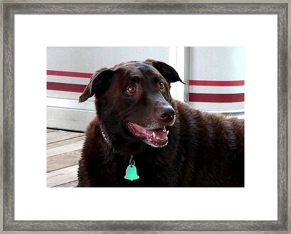 Coco Wooten Framed Print