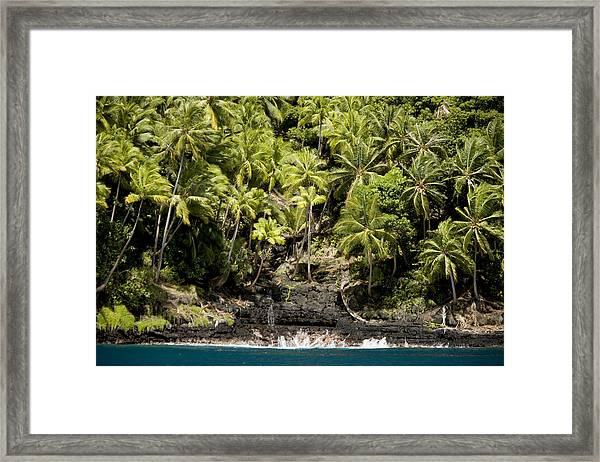 Coconut Palm Covered Hillsides In Bay Framed Print