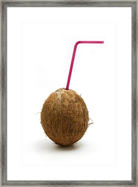 Coconut With A Straw Framed Print