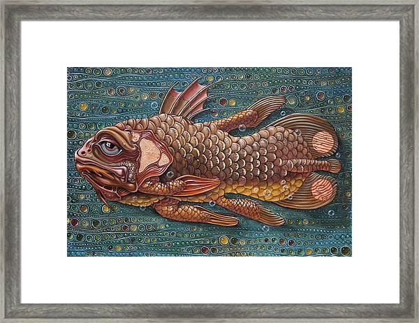 Coelacanth Framed Print