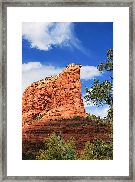 Coffeepot Afternoon Framed Print