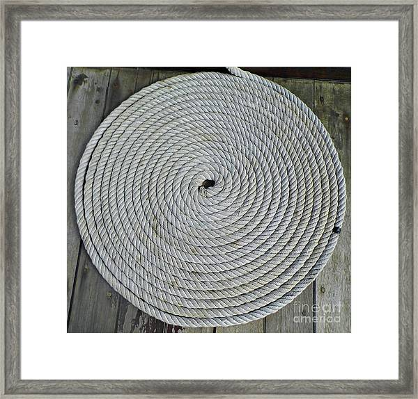 Coiled By D Hackett Framed Print