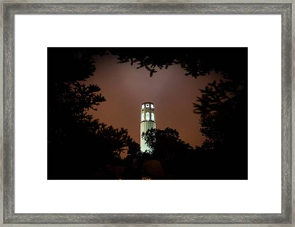 Coit Tower Through The Trees Framed Print