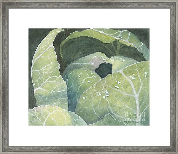 Cold Crop Framed Print