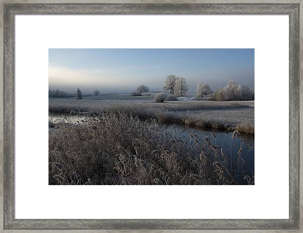 Cold Framed Print by Nina Pauli