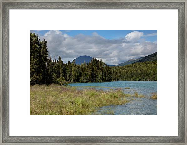 Cold River Marsh Framed Print