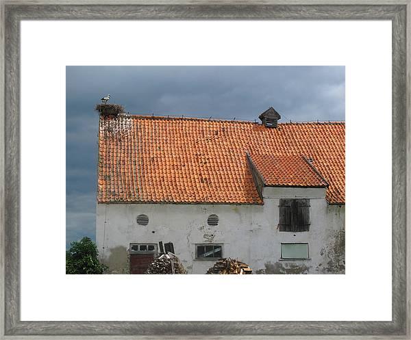 Cold Sky Framed Print