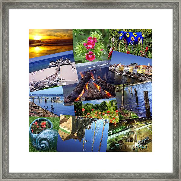 Collage Photography By Sascha Meyer Framed Print by Sascha Meyer