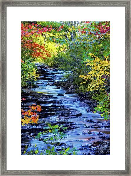 Color Alley Framed Print