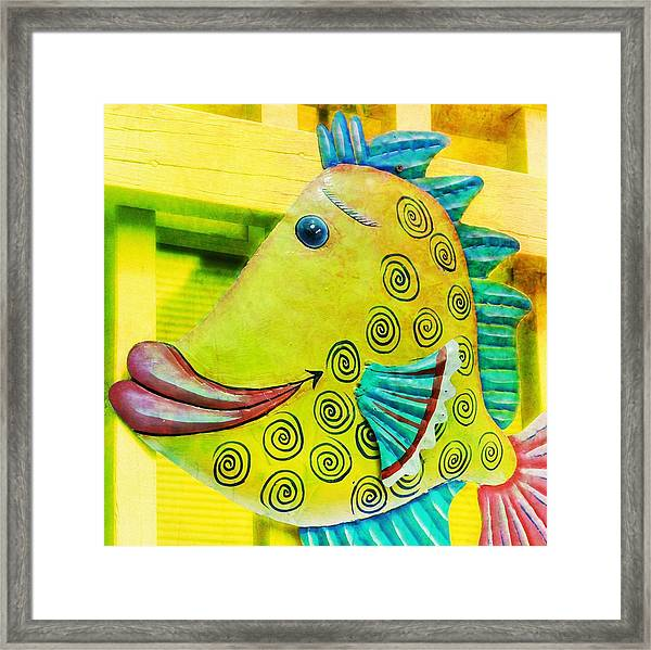 Color Me Happy Framed Print by JAMART Photography