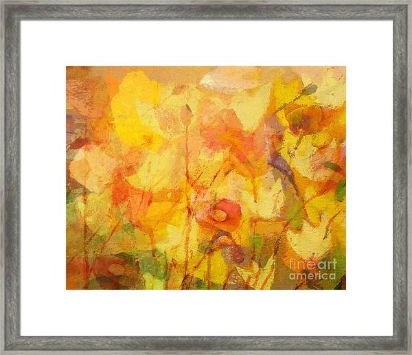 Color Sinfonia Framed Print