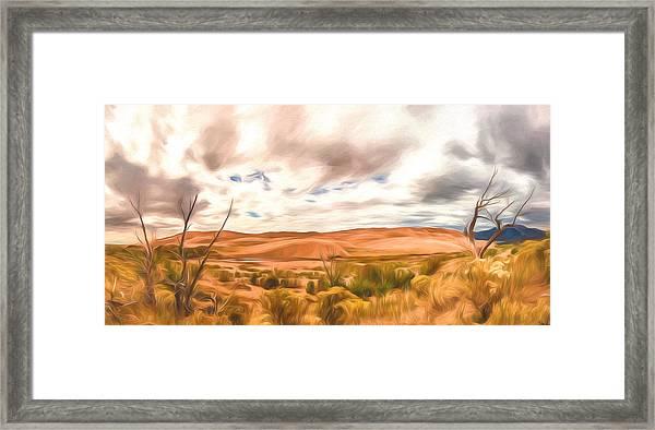 Colorado Dunes Framed Print