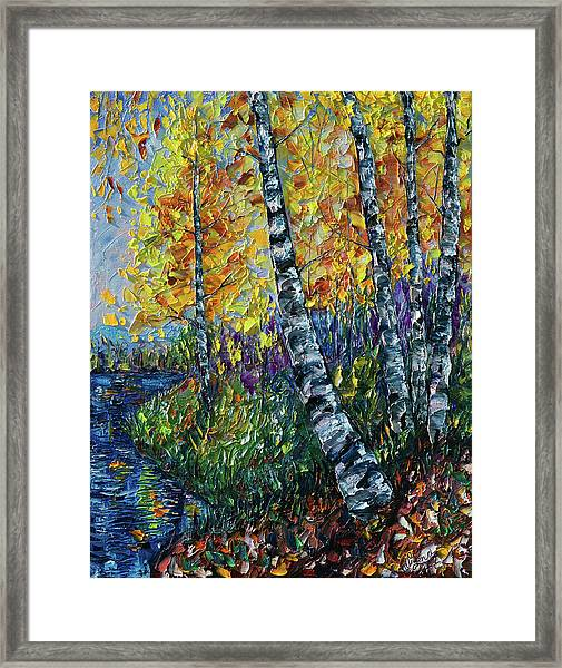 Glimpses Of Colorado Fall Colors Framed Print