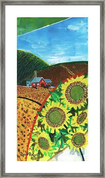 Colorado Sunflowers Framed Print