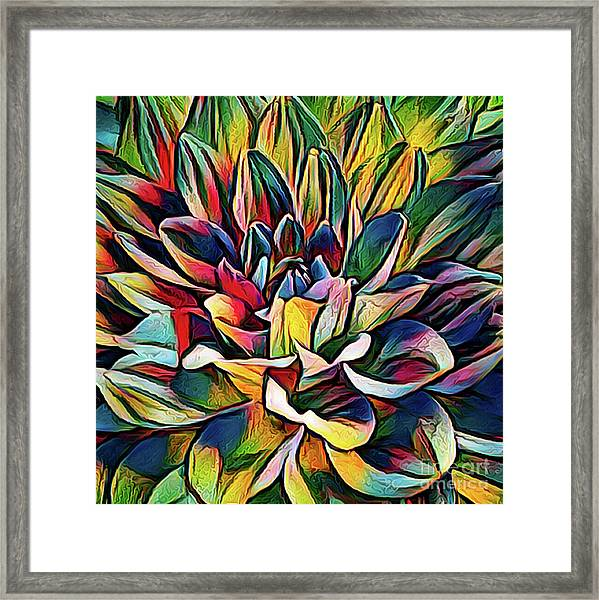 Colorful Abstract Dahlia Framed Print