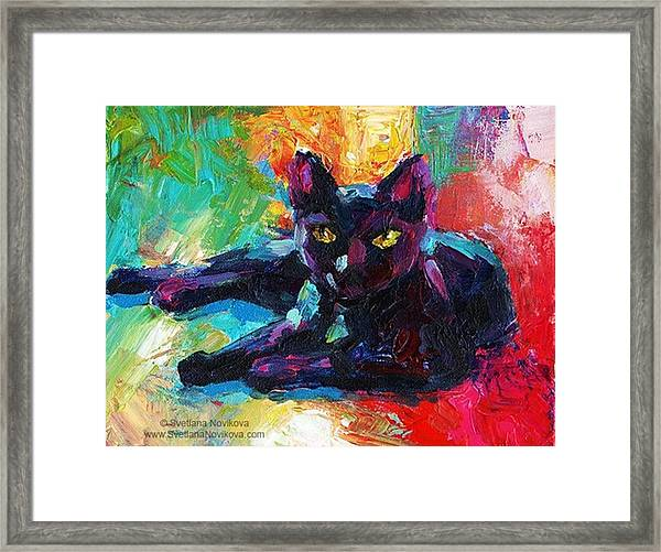Colorful Black Cat Painting By Svetlana Framed Print