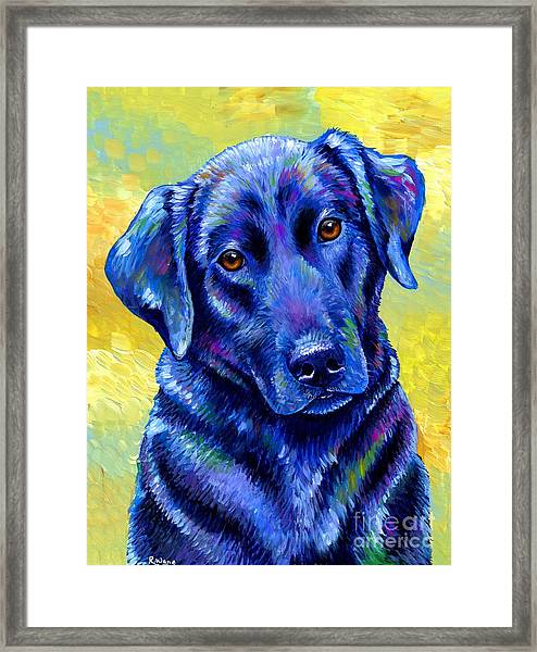 Colorful Black Labrador Retriever Dog Framed Print