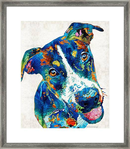 Colorful Dog Art - Happy Go Lucky - By Sharon Cummings Framed Print