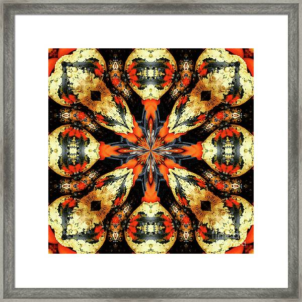 Colorful Gourds Abstract Framed Print