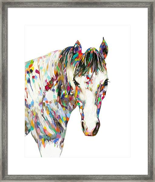 Colorful Horse Framed Print